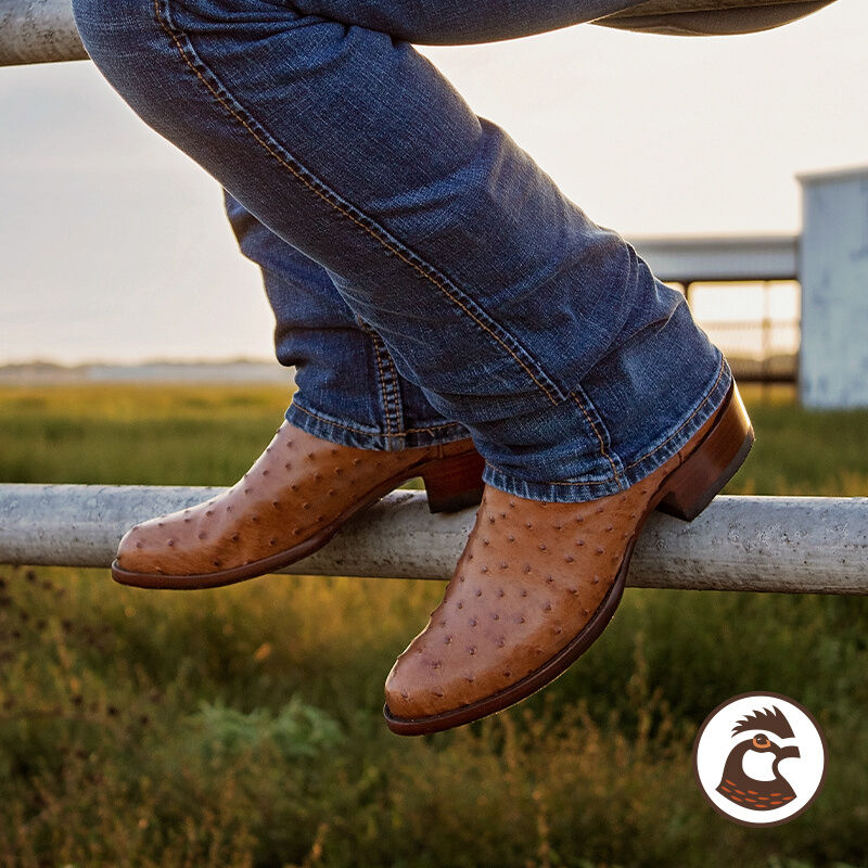 Shop New Arrivals by JRC & Sons Boots