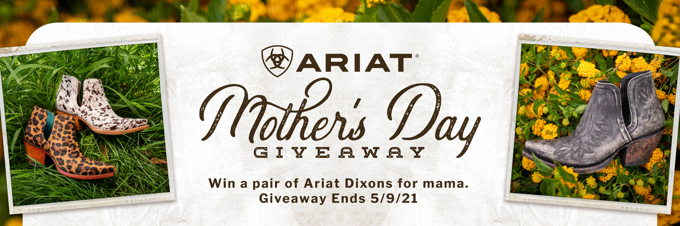 Win a pair of Ariat Dixons for mama.